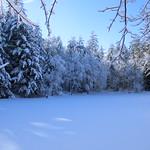 Auburn NH Winter Wonderland 67