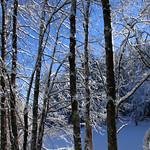 Auburn NH Winter Wonderland 92