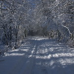 Auburn NH Winter Wonderland 75