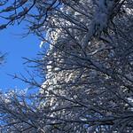 Auburn NH Winter Wonderland 51