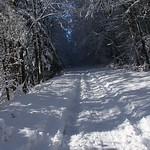 Auburn NH Winter Wonderland 86
