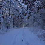 Auburn NH Winter Wonderland 33