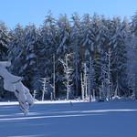 Auburn NH Winter Wonderland 71