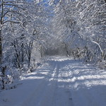 Auburn NH Winter Wonderland 74