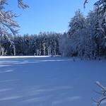 Auburn NH Winter Wonderland 63