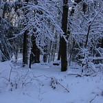 Auburn NH Winter Wonderland 35
