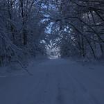 Auburn NH Winter Wonderland 95
