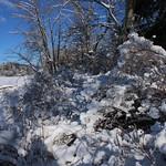 Auburn NH Winter Wonderland 11