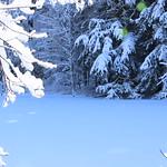 Auburn NH Winter Wonderland 66