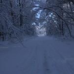 Auburn NH Winter Wonderland 98