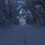 Auburn NH Winter Wonderland 94