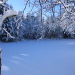 Auburn NH Winter Wonderland 64