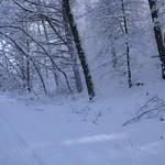 Auburn NH Winter Wonderland 97