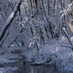 Auburn NH Winter Wonderland 29
