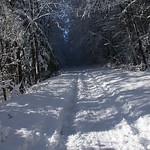 Auburn NH Winter Wonderland 85
