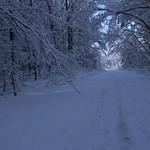 Auburn NH Winter Wonderland 99