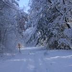 Auburn NH Winter Wonderland 100