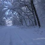 Auburn NH Winter Wonderland 96