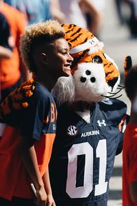 Auburn vs Akron