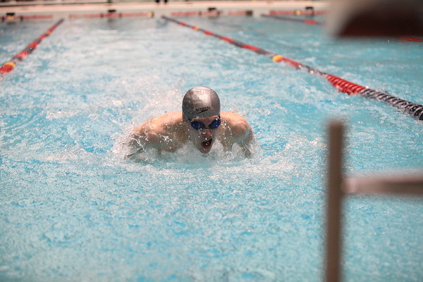 Auburn Mountainview Boys Swim and Dive