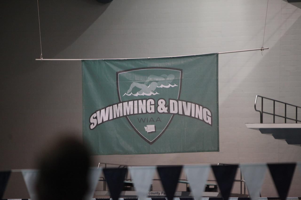 2014 State Boys Swim Prelims