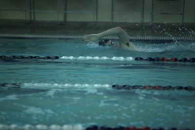 2015-01-13 AMHS Swim Dive vs River Ridge 006