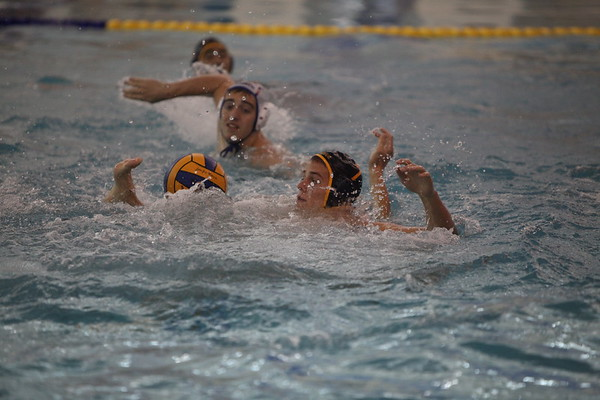 AMHS Boys Water Polo - 2014