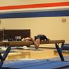 2015-01-21 AMHS Gymnastics Senior Night 465