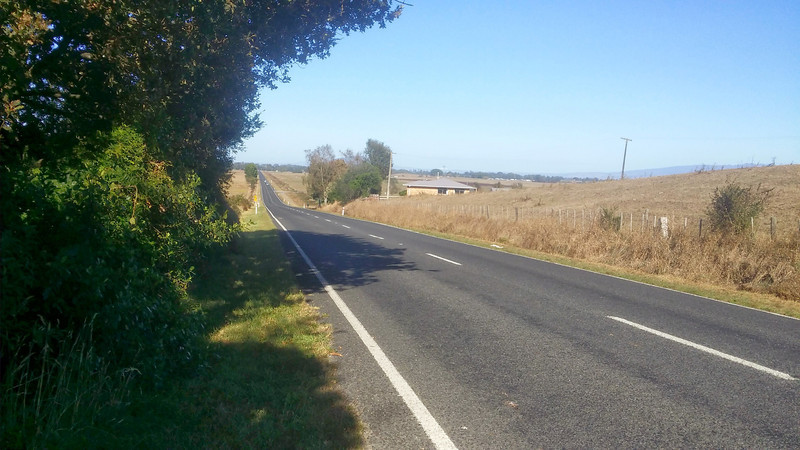 Day 3 About 10km out of Cambridge bound Te Kuiti