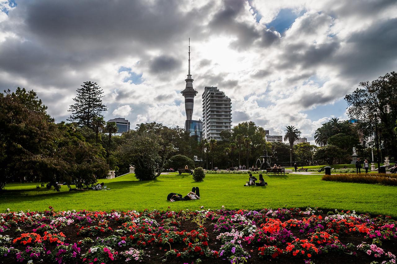 Garden outside Auckland university, New Zealand