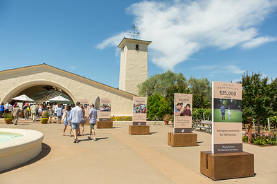 Guests arrive at the Barrel Auction, Robert Mondavi Winery.  Briana Marie Photography for Napa Valley Vintners