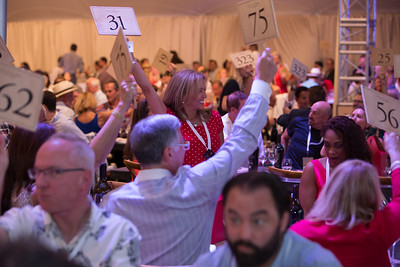 The paddles are going up! Live Auction. Briana Marie Photography for Napa Valley Vintners