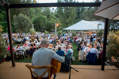 Dinnertime! while Ottmarr Liebert plays on  |  Auction Napa Valley 2016 |  Briana Marie Photography for Napa Valley Vintners