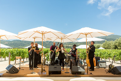 Live music gets the energy going at the Barrel Auction. Robert Mondavi Winery  Briana Marie Photography for Napa Valley Vintners