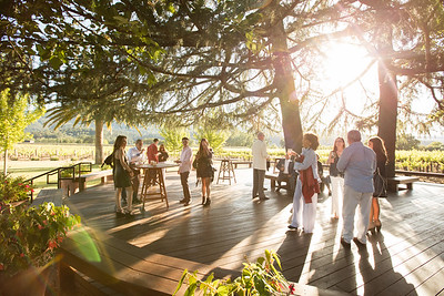 Guests at Grgich Hills Estate enjoyed a sip and some glorious sunshine on the patio. Photo ©2017 by Jason Tinacci / Napa Valley Vintners