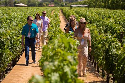 Guests take a stroll among the vineyards at Inglenook. Photo ©2017 by Jason Tinacci / Napa Valley Vintners