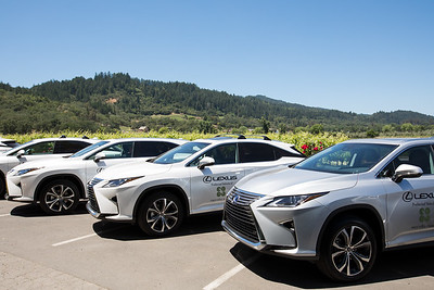 Lexus the preferred vehicle of Auction Napa Valley