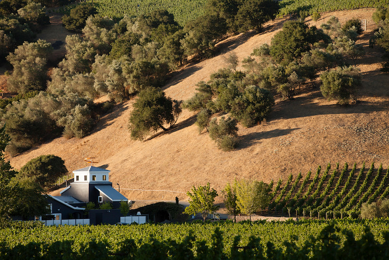 Private tours and tastings