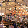 """The tent during Auction Napa Valley 2015. <br> <br> Photo by <a href=""""http://napasphotographer.com/"""">Bob McClenahan</a>"""