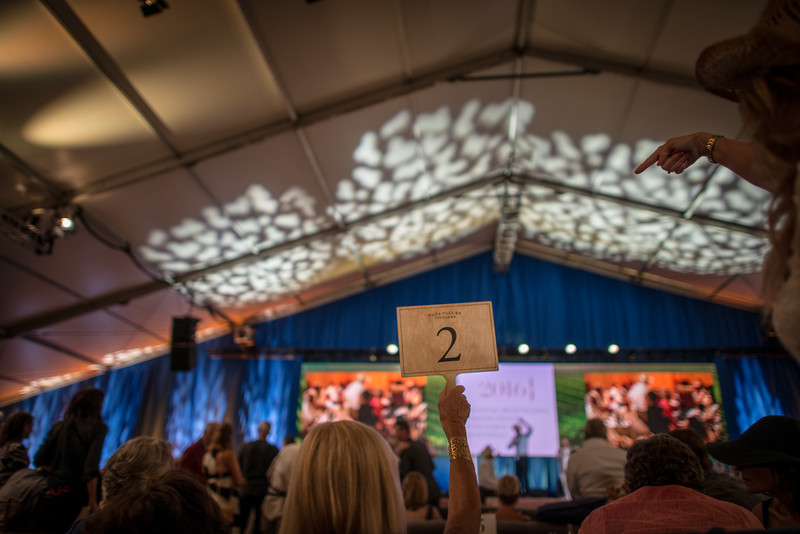 """Bidding during Auction Napa Valley 2015. <br> <br> Photo by <a href=""""http://napasphotographer.com/"""">Bob McClenahan</a>"""
