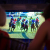 "The auction took a break to watch the Belmont Stakes.  Photo by <a href=""http://napasphotographer.com/"">Bob McClenahan</a> for Napa Valley Vintners."