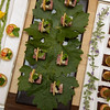 """Food or art? When you pair chefs Daniel Boulud of New York's DANIEL and Michael Tusk of Quince, you get both! Photo by <a href=""""http://www.tinacciphoto.com"""" target=""""_blank"""">Jason Tinacci</a> for the Napa Valley Vintners."""
