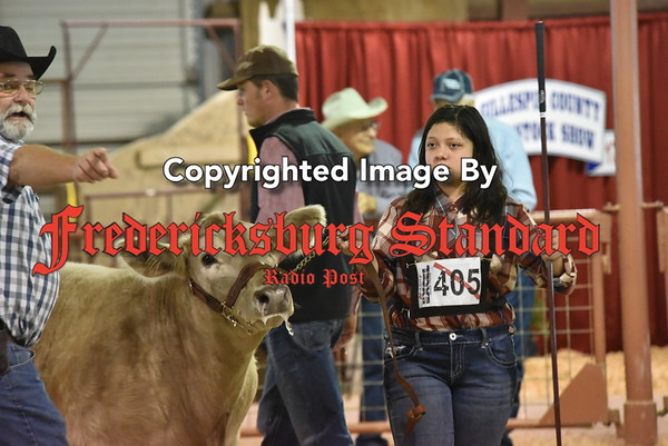 Auction, Stock Show pics 1-18-17