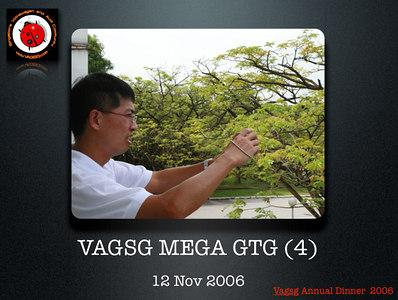 VAGSG Annual Dinner Slides 06