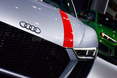 Audi R8 RWD Grille