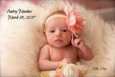 Audrey's Newborn Shoot