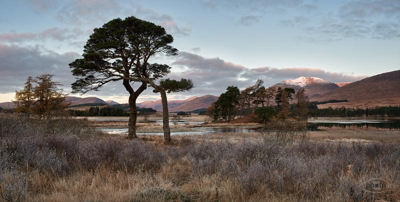 Morgenstimmung am Loch Tulla, Highlands, Schottland