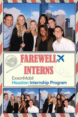 Farewell Interns - Strips