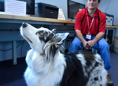 8/24/2016 Mike Orazzi   Staff Robert Casey holds Aspen during the Dog Days of Summer program at the Imagine Nation Museum Early Learning Center Wednesday morning.