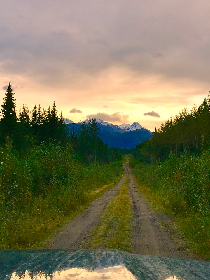 Day 5, Big Creek Yukon to Slana Alaska, 710 miles<br /> <br /> Randomly exploring some dirt roads south of Tok.<br /> <br /> Photo by Meredith